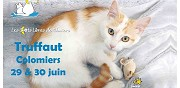Adoptions chats