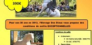 Saillie cheval 2013 osario pp race cr�me saint hippolyte