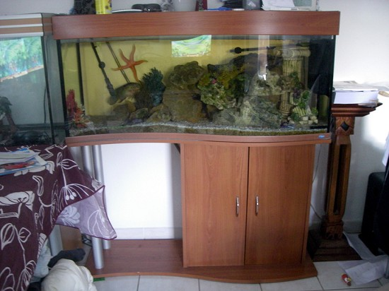 vends aquarium vague 180 litres hy res var 83 sur. Black Bedroom Furniture Sets. Home Design Ideas